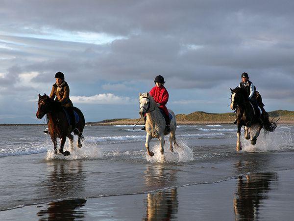 Top 10 Activities Along Ireland's Wild Atlantic Way -- National Geographic
