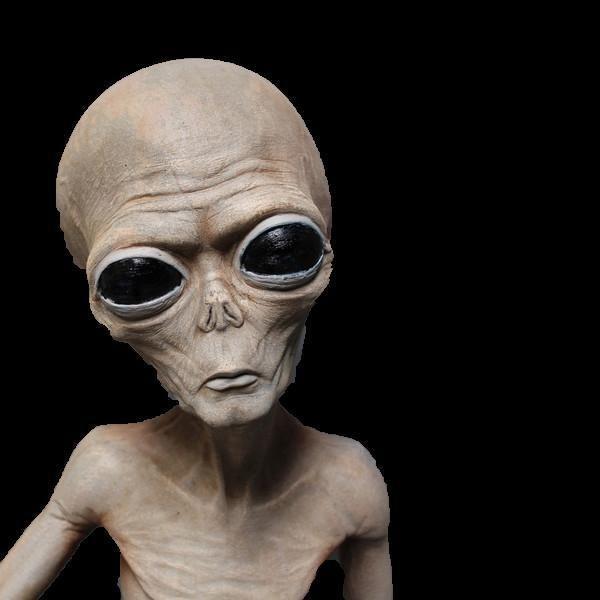 life size roswell alien body specimen area 51 prop halloween decorations - Halloween Decorations Ebay