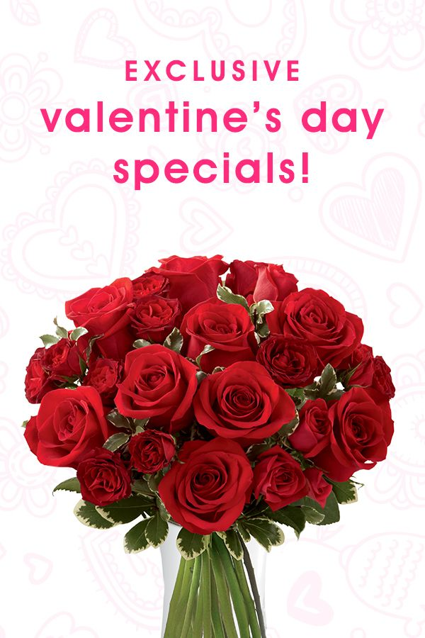 Roses Valentine S Day With Stuff Toys : Best images about valentine s day flowers gifts on