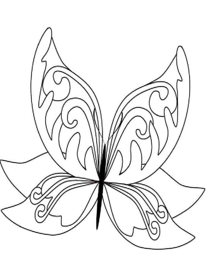 Beautiful Butterfly Coloring Pages From Printable Butterfly