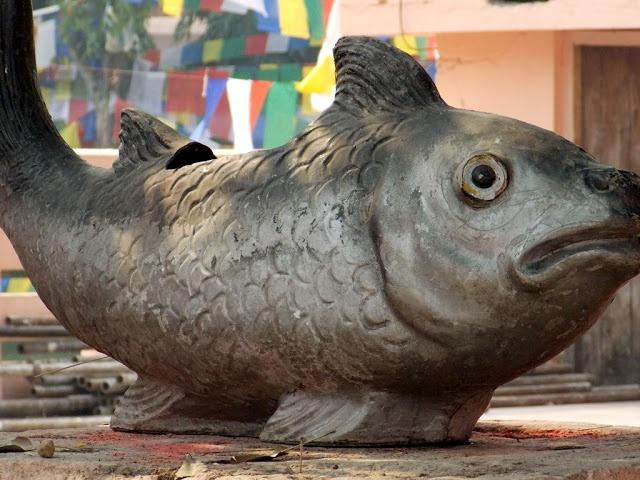 Brass fish