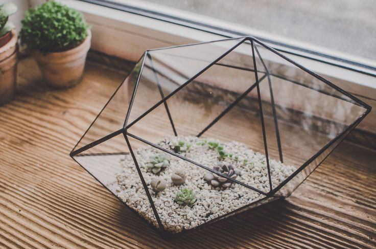 Terrarium Large Strange shape, Staine Glass terrarium, Succulent, Flowerpot