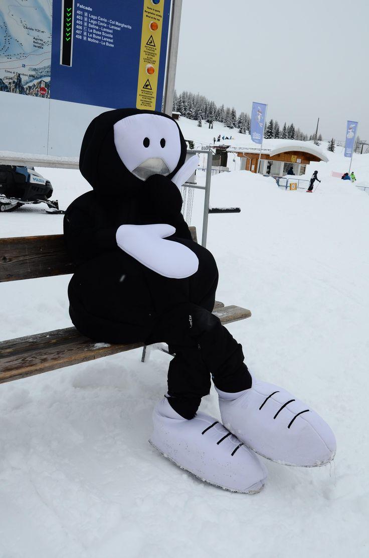 La nostra formicona è stanca dopo una giornata sugli sci! #ski #formiche #SanPellegrino #Moena #ValdiFassa #FabioVettori #winter #neve #snow