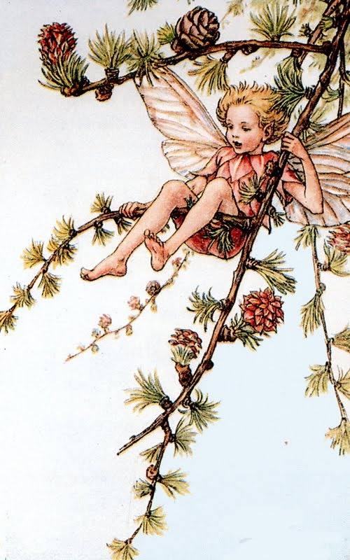 Miras Miracle: Cicely Mary Barker