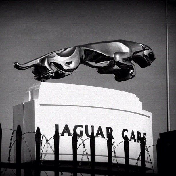 Jaguar Cars - @staceycoxall- #webstagram