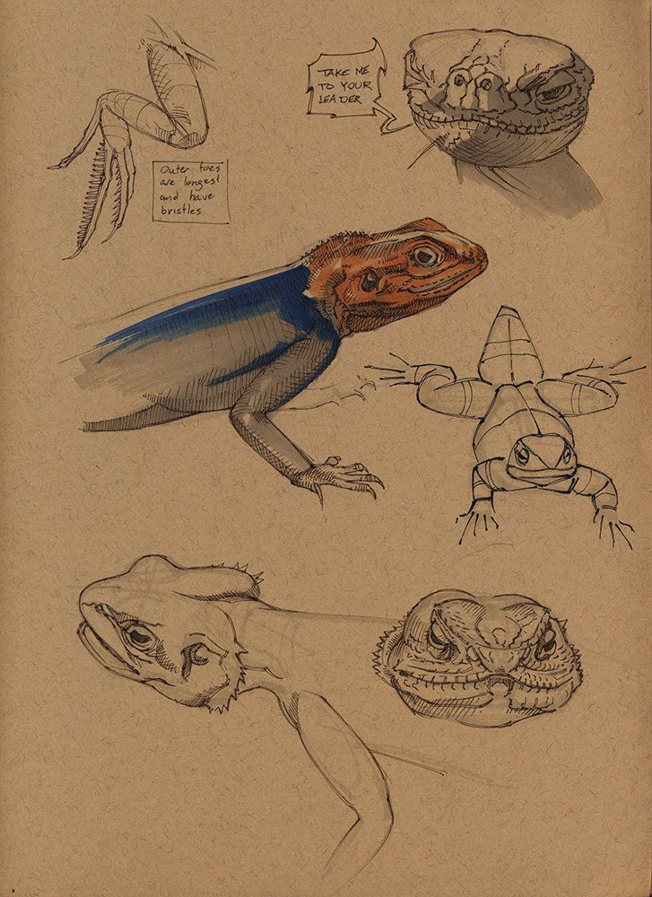 Komodo dragon by Floris van der Peet on ArtStation.
