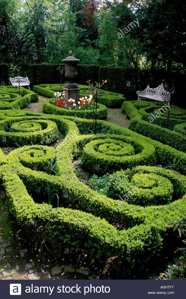 17 Best Images About Formal Garden On Pinterest