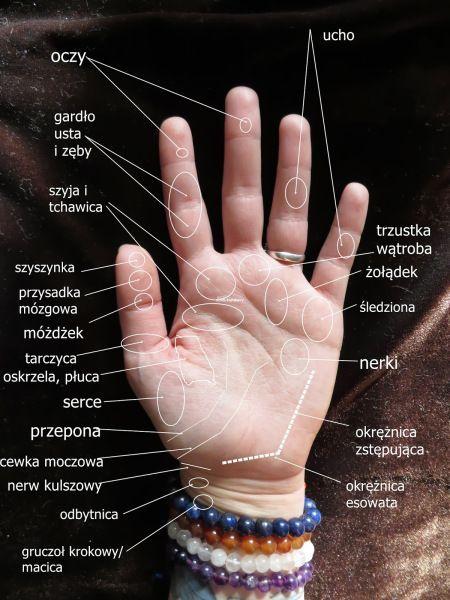 Znalezione obrazy dla zapytania mapa dłoni akupunktura