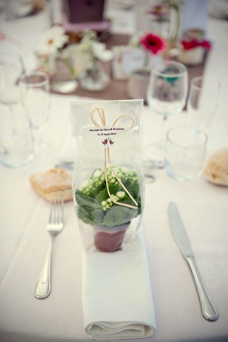 12 best wedding favors images on Pinterest | Succulents, Wedding ...