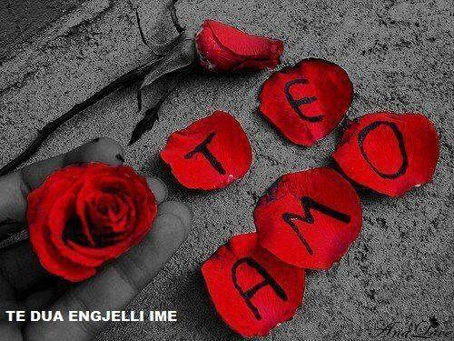 https://www.facebook.com/PoeziMagjike/photos/a.470953629638934.113622.439132606154370/471360946264869/?type=1