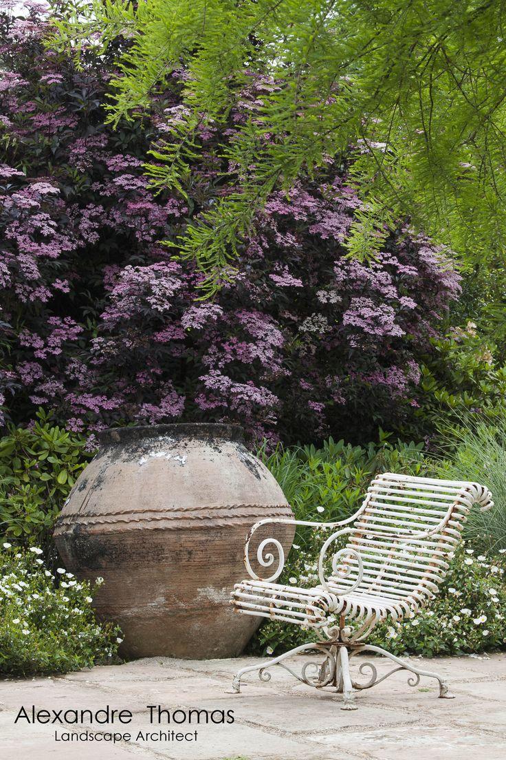 Les 94 meilleures images propos de jardin agapanthes sur for Jardin jardinier normandie