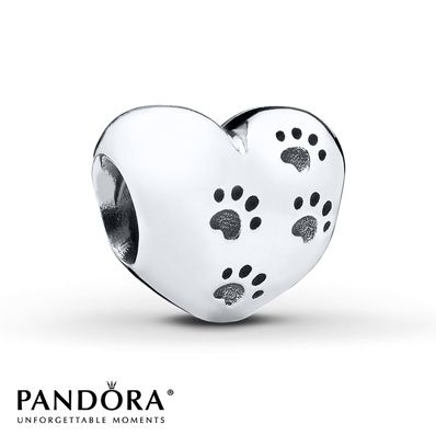 Pandora Charm My Sweet Pet Sterling Silver  I have this one.  Should get Brodie engraved.