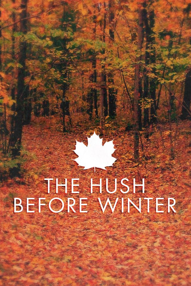 Fall, the hush before Winter.
