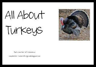 Today In First Grade- Great Non-Fiction Projectable Book on Turkeys