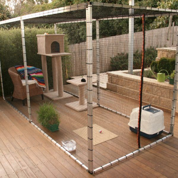 Aside from training your cat to walk on a harness, what else can you do to allow them to be outdoors but safe at the same time? Have you considered an outdoor cat cage?