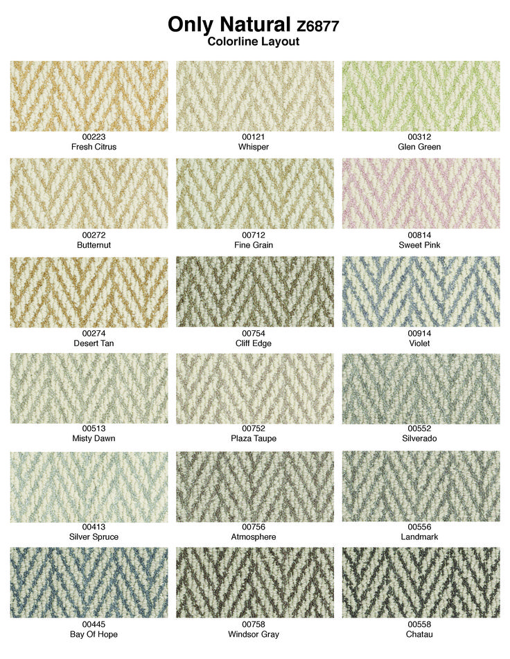 The color palette for Only Natural carpet style from Tuftex