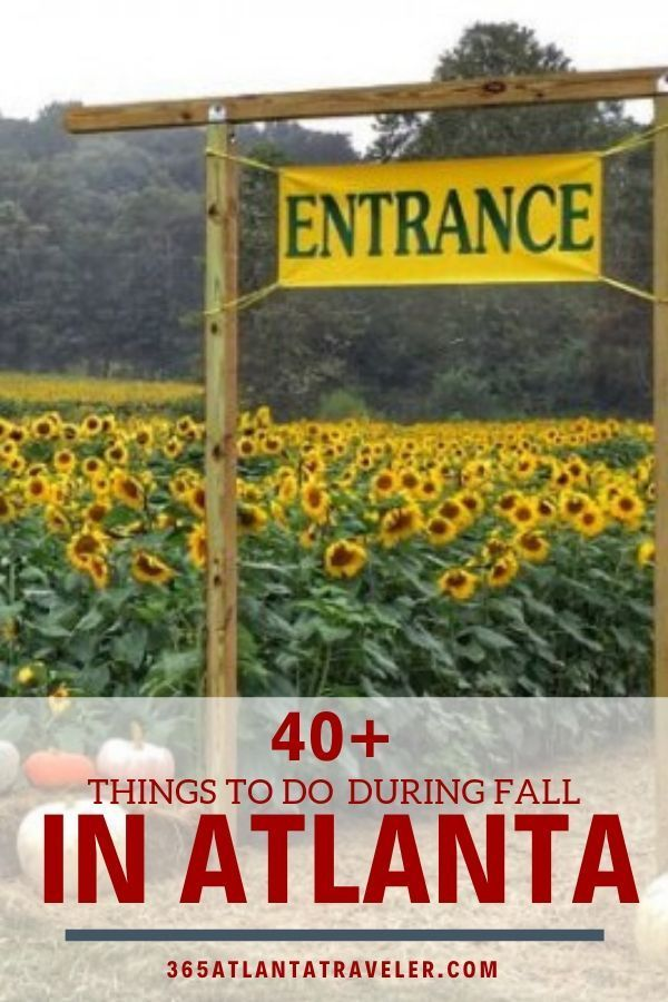 Over 40 Ways To Cozy Up To Fall In Around Atlanta Georgia There Are So Many Fun Thing To Do With Kids To Cele Things To Do Atlanta Travel Fun