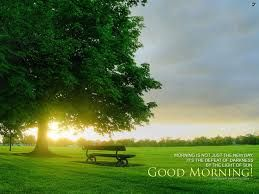 Image result for www environmental image of good morning good night hd