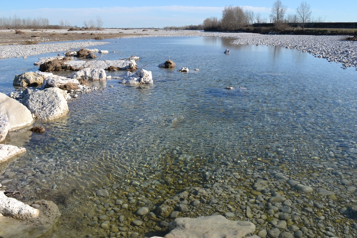 Piave river Italy 4