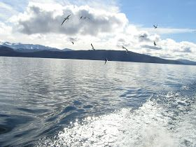 Blog d´Elisa N | Voyages, Photos et Lifestyle: Excursion à Puerto #Blest depuis San Carlos de #Bariloche