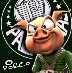 Frase 16 - Fotos de Frases do Palmeiras do Palmeiras