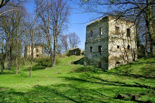 Dąbrówka Starzeńska - Zamek Stadnickich - najlepiej zachowane dwie wieże