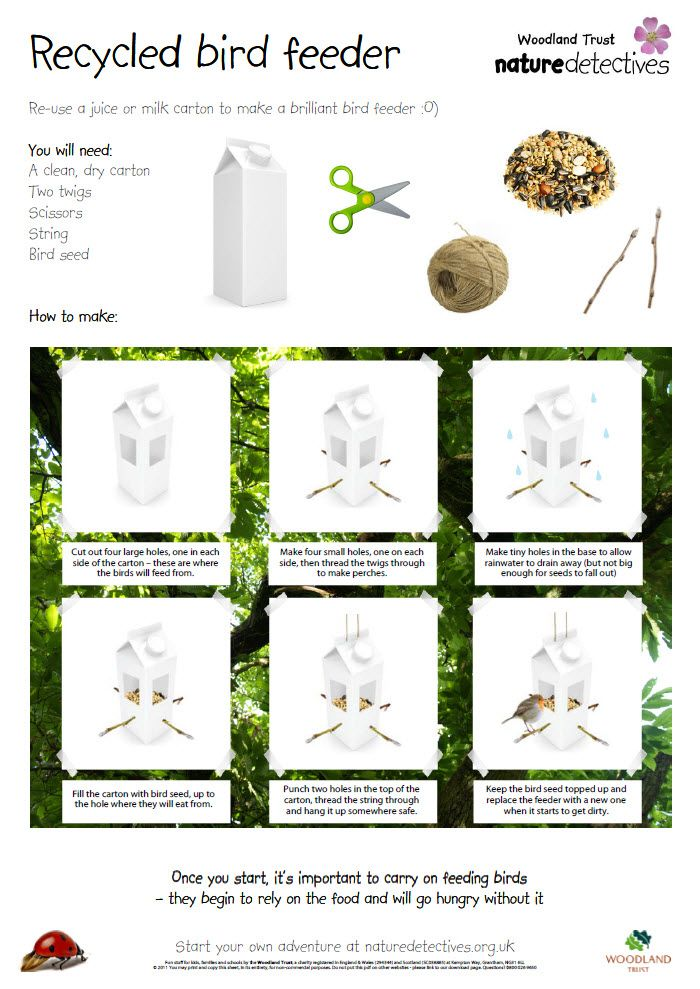 Bird feeder help your pupils make a bird feeder from for Making a bird feeder out of recycled materials