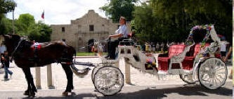 Go for a romantic and fun carriage ride on a Bluebonnet Carriage in downtown San Antonio!  Click here to visit their website!