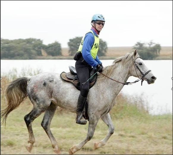 5 important steps of endurance horse racing    http://www.stridedistributors.co.za/blog/5-important-steps-endurance-horse-racing