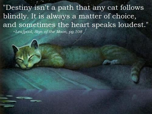 """Destiny isn't a path any cat follows blindly. It is a matter of choice, and sometimes the heart speaks loudest."""