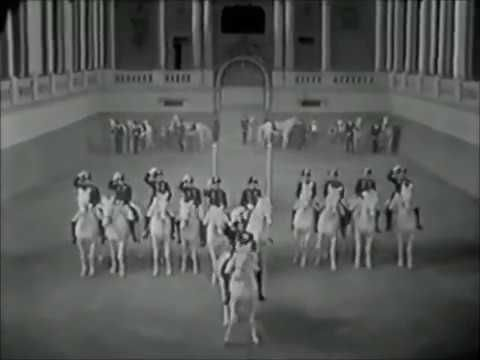 Tribute: Spanish Riding School in Florian (1940) - YouTube