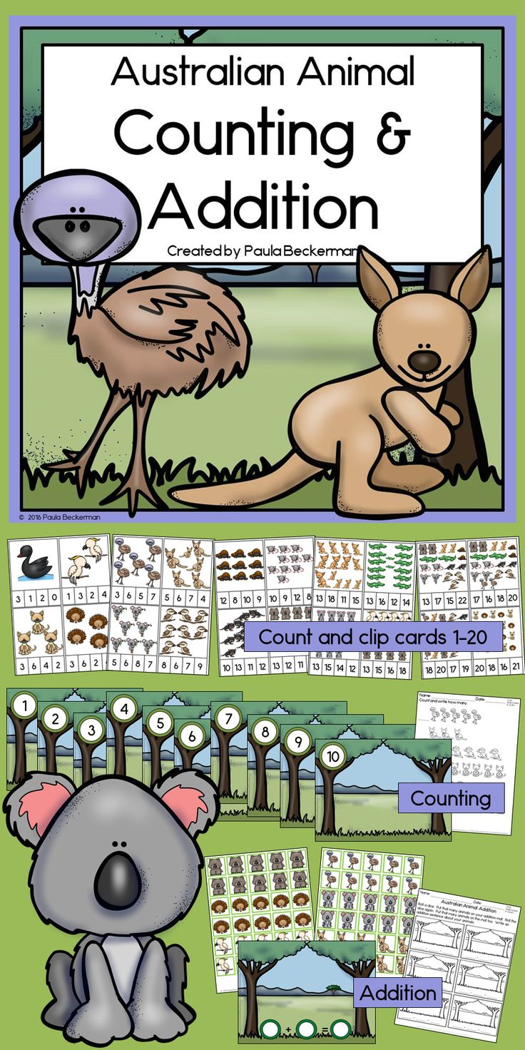 Preschool and kindergarten students will love counting and adding with these Australian animals. Includes 3 fun activities. TpT$