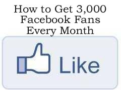 How to get 3,000 Facebook Fans/Likes a Month to Your Facebook Page http://fiverr.com/chivvy/show-you-how-to-get-3000-likes-or-fans-to-your-facebook-fanpage-each-month