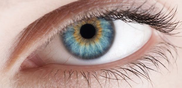 """Dr. Bernard Jensen delivered his excellent knowledge about Clinical Iridology on His Charts, which was later known as """"Dr. Bernard Jensen Clinical Iridology Charts"""". These charts plays major roles in Studies and practices of Clinical Iridology."""