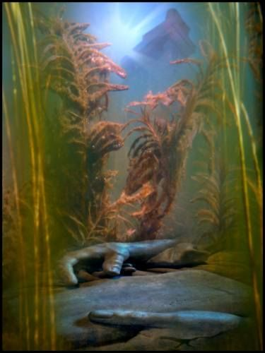 """Saatchi Art Artist Algis Kemezys; Photography, """"The lost book of Atlantis - Limited Edition 1 of 3"""" #art"""
