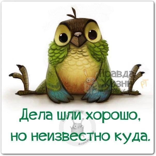 9f3f0546fa112698adf4947107495e84.jpg (604×604)