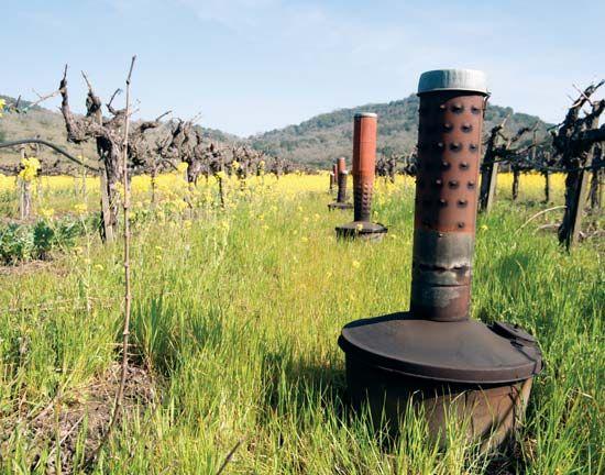 smudge pot | agricultural tool | Britannica.com