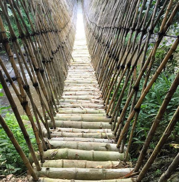 Green Village - Bamboo Bridge