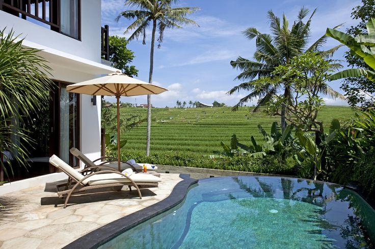 Poolside view, 2 bedroom villa at Canggu Terrace Bali