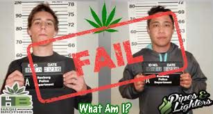 "What you ""feel"" when you get busted for moving #mj @hash_brothers #games #boardgames #co #pot #weed #marijuana #dabs #ganja #chronic #stoners #trivia @indyrecords #dank #dope #stoner #song"