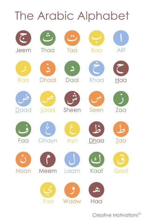 "Alphabet (To read correctly start from right to left : ""Alif"" being the first letter and ending by ""Yaa"")"