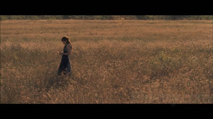 Aint Them Bodies Saints — Bradford Young (DP)