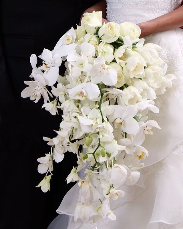 Hermoso ramo de orquídeas blancas 👰🏻💕 #linaflorezofficial #weddingplanner #eventplanner #experience #nice #orchid #white #elegant #style #wedding #follow #flowers #white #amazing #good #day good #wedding #follow #orchid #experience #flowers #white #nice #style #linaflorezofficial #eventplanner #weddingplanner #day #elegant #amazing #eventprofs #meetingprofs #eventplanner #eventtech