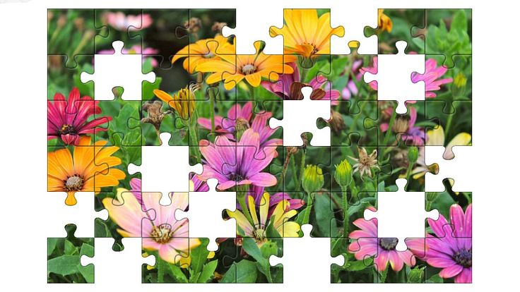 Free Jigsaw Puzzle Online - COLORFUL FLOWERS  #Game #JigsawPuzzle #Puzzle #freegames