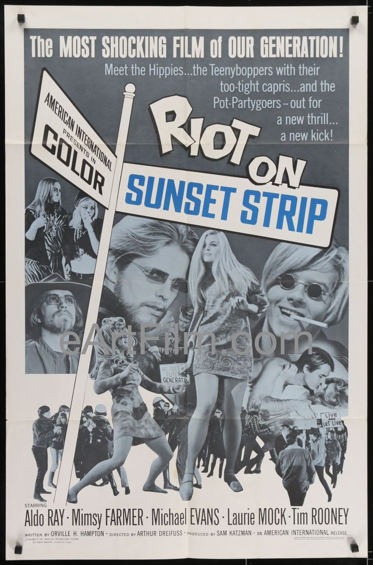 Riot On Sunset Strip-Aldo Ray-Mimsy Farmer-hippy riots classic-1967-27x41