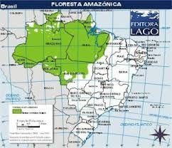Floresta Amazonica Mapa Pesquisa Google