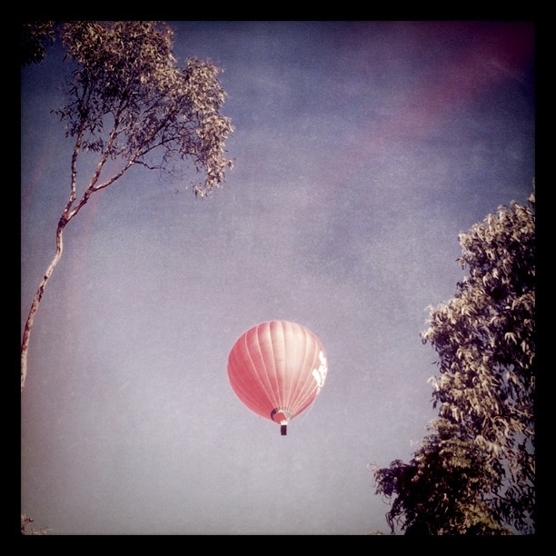 Balloon over the top of my house- cool!