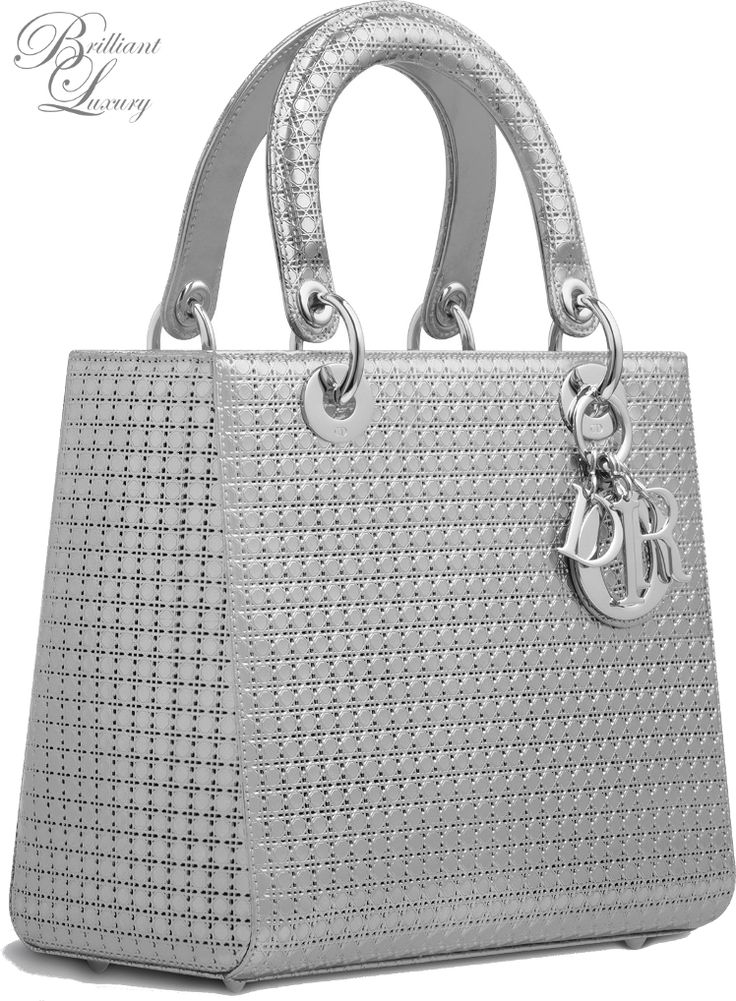 silver Lady Dior bag Fall 2015