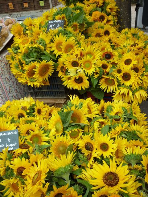 Sunflowers in Provence market at Bonnieux