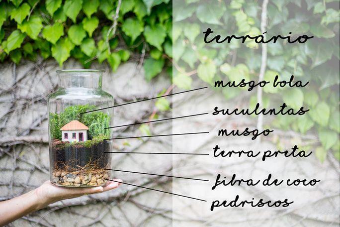 como fazer um terrario
